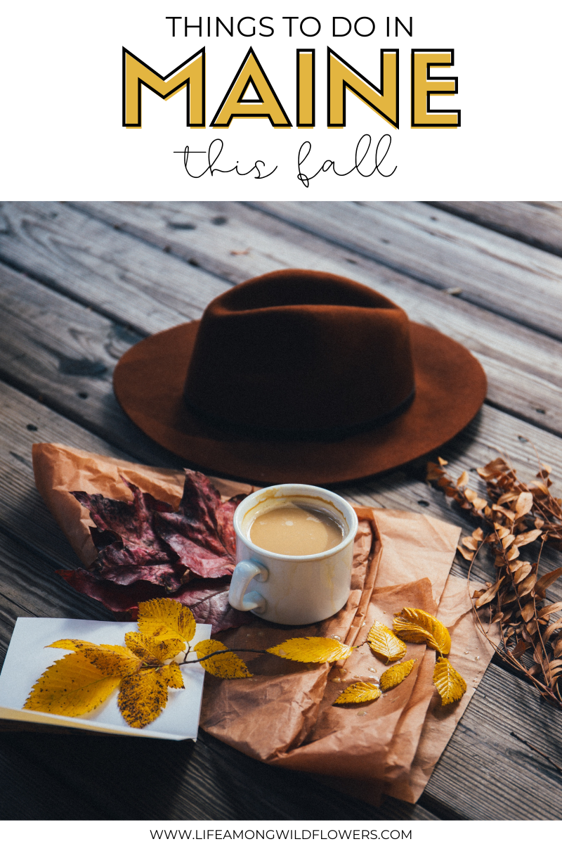 Hat with fall leaves and coffee